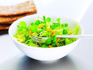 Marineret salat